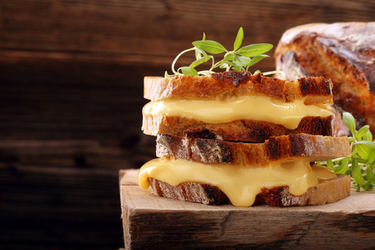 Fresh sandwich with cheese and herbs