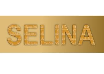 Vorname Selina, Grafik