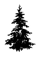 Fir tree silhouette isolated on white. Hand drawn ink illustration.