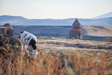 Ani ruins in Turkey