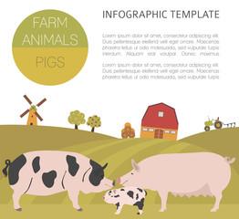 Pig farming infographic template. Hog, sow, pig family. Flat des