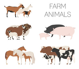 Farm animall family collection. Cattle, sheep, pig, horse, goat