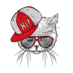 Beautiful cat with glasses and a cap. Vector illustration for a card or poster. Illustration for prints on clothes. Design. Cute kitten.