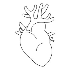 Heart icon. Outline illustration of heart vector icon for web