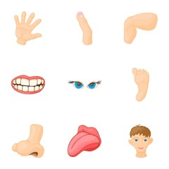 Body parts icons set. Cartoon illustration of 9 body parts vector icons for web