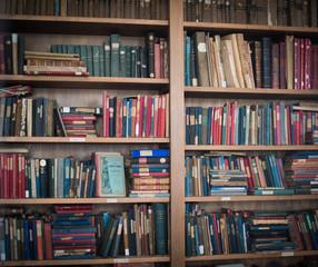 Old bookshelf with school books
