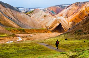 Garden Poster Scandinavia Hiker walking to Landmannalaugar mountains, Iceland