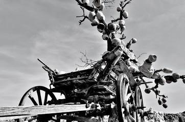 Çömlek ağacı