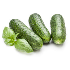 Cucumber vegetable and basil leaves isolated on white background
