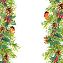 Fir tree, mistletoe, red finch bird. Christmas seamless border. Watercolor