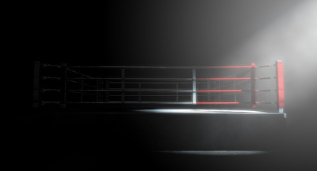 Boxing Ring Corner Lit