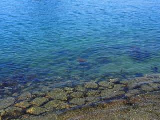 海岸線の岩場