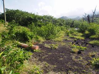 三宅島 噴火による泥流で埋もれた神社