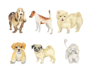 Watercolor dogs set on white background. Beautiful and smart puppies.