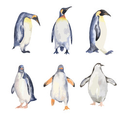 Watercolor penguins set on white background. Antarctic animals.