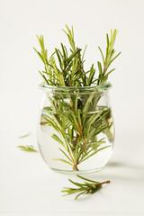 Fresh italian herbs in water