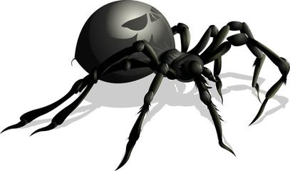 funny spider cartoon for you design