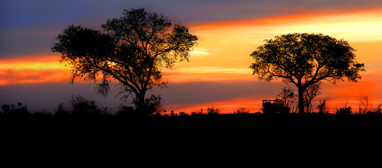 Safari vehicle traveling down a road at sunset in Kruger Game Preserve