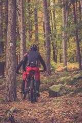 Fahrrad fahren im Herbst Wald
