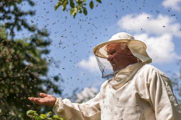 beekeeper and bee swarm, apiary beehive honey