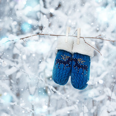 Kids mittens and gloves hanging on a branch in winter forest