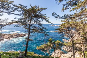 Scenic California Coast near Big Sur