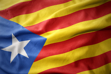 waving colorful flag of catalonia.