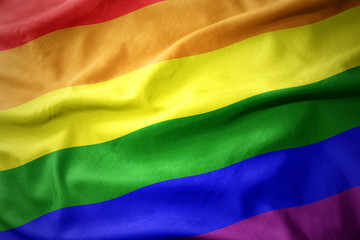 waving gay rainbow flag .