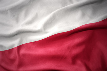 Wall Murals Northern Europe waving colorful flag of poland.
