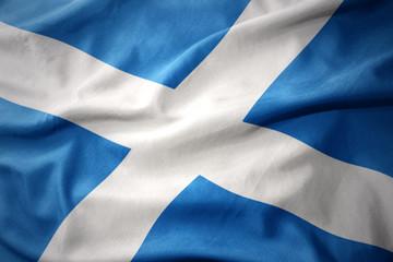 waving colorful flag of scotland.