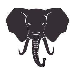 elephant animal big isolated vector illustration design