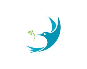 Hummingbird Logo Template vector icon