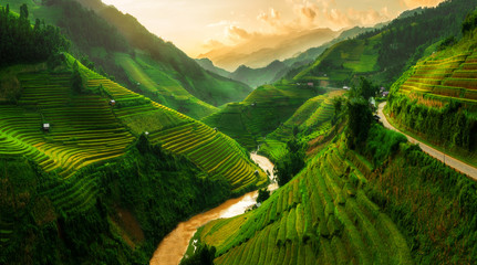 Terraced rice field in Mu Cang Chai, Vietnam Wall mural