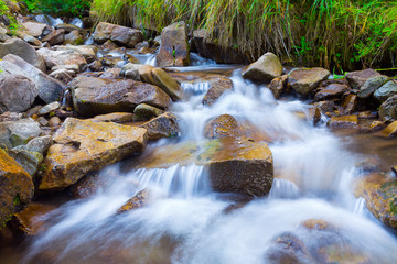 Mountain stream(creek) in the stones and green grass banks in mountain forest. Crystal clear water - rare condition of modern enviroment. Long exposure.