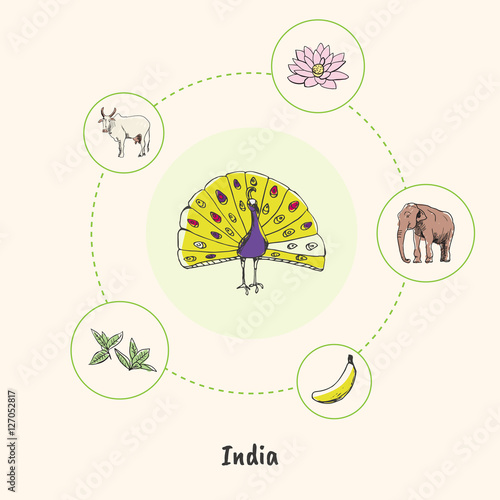 Attractive India Peacock Colorized Doodle Surrounded Lotus Flower