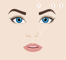 Woman face and eyebrow scheme. Trimming. How to shape your eyebrows at home. Makeup tips. Perfect brow shape for your face. Trendy mapping.