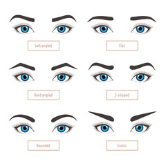 6 basic eyebrow shape types. Classic type and other. Eyebrows with eyes - stock vector illustration with captions. Fashion female brow. Trimming.