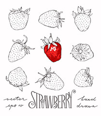 Set of vector strawberries.
