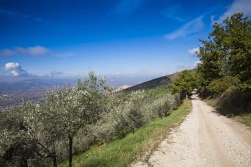 Italia,Umbria,Trevi