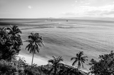 Coast of the tropical island. Black-white photo.