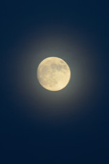 Shining full moon closest to earth on 13th November 2016