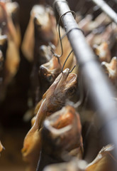 production of smoked fish