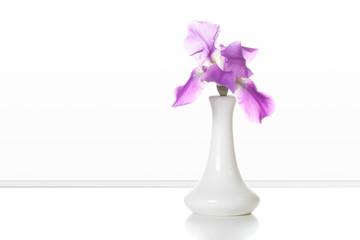 Vase with beautiful iris flowers, interior decoration