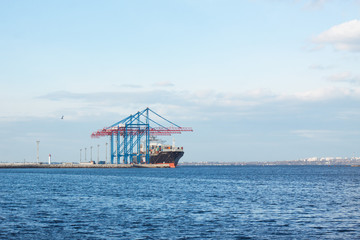 bulk ship and cranes in the sea port
