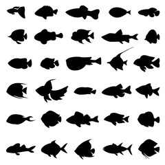 Wall Mural - Fish vector silhouettes black on white
