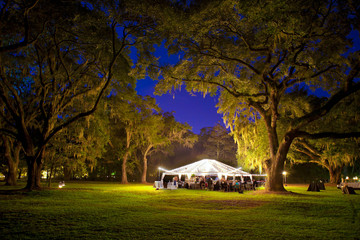 outdoor reception at night under trees