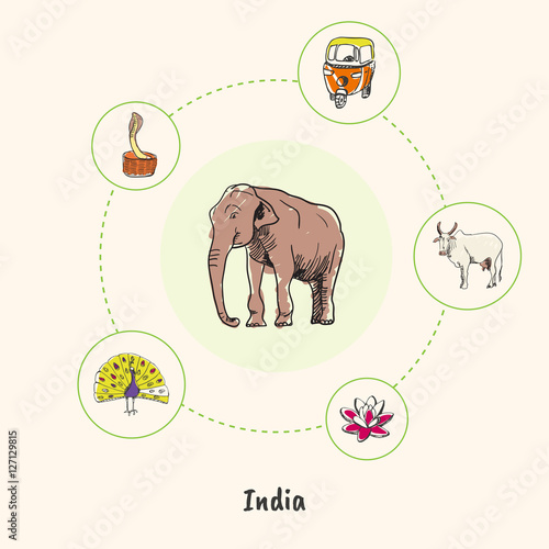 Attractive India Elephant Colorized Doodle Surrounded Peacock