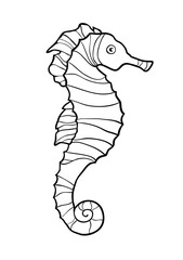 Hand drawn sketch of seahorse isolated on white background.