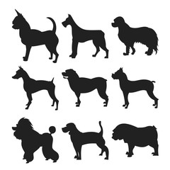 Collection of dogs silhouette