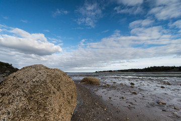 Bay of Fundy near Pocologan during low tide